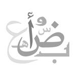مجلس استشاري لنشر العربية بالإمارات