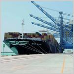 ميناء خليفة استقبل أضخم سفينة شحن