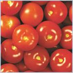 طماطم إسرائيلية مسرطنة تغزو أسواق الكويت