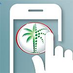 «أراضي دبي» تطلق مشروع «العقار الرقمي» الأول في العالم