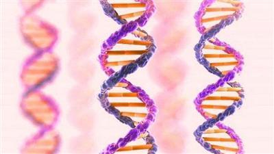 كشف ثوري في علم الجينات يطيل الأعمار إلى 160 سنة