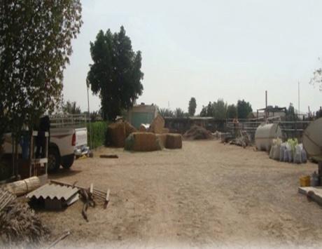 1770 عزبة منظمة في مدينة أبوظبي والبلدية تنذر المخالفين