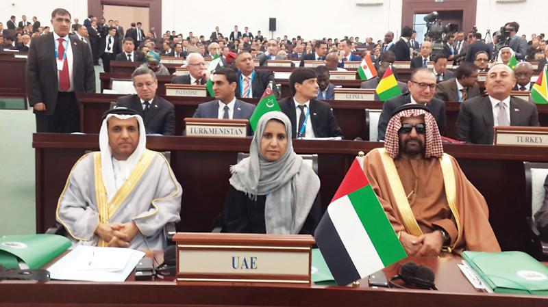 الإمارات: الثقافة والفكر والإعلام أساس مواجهة الإرهاب