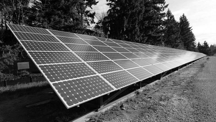 من الوقود الأحفوري إلى الطاقة الشمسية وطاقة الرياح