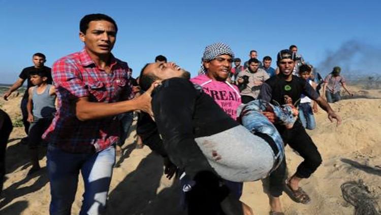 شهيدة في جنين وإصابات واعتقالات بالجملة في الضفة وغزة