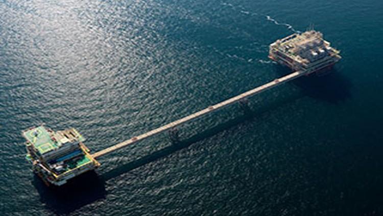 وزير الطاقة: خفض مخصصات نفط الإمارات نموذج يحتذى