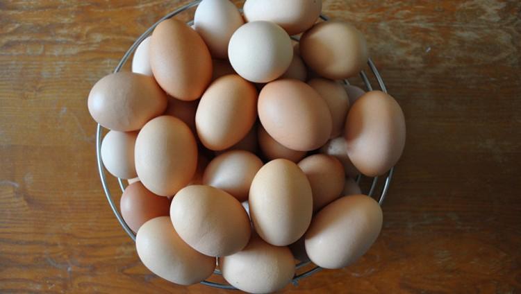 فوائد لا تعرفها عن قشر البيض