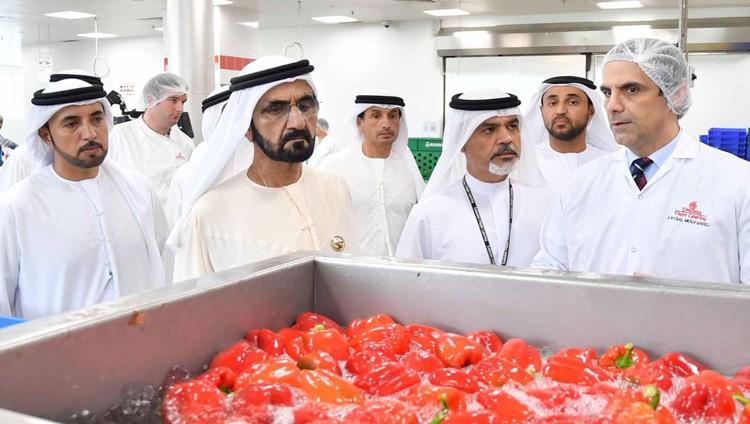 """محمد بن راشد يتفقد سير العمل في """"الإمارات لتموين الطائرات"""""""