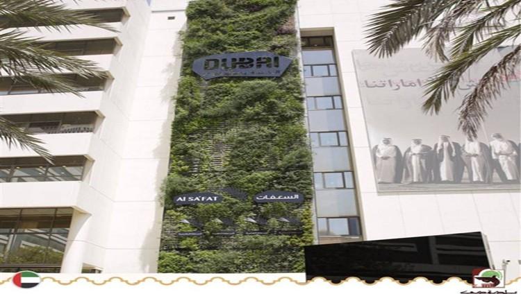 بلدية دبي: التحول من لائحة المباني الخضراء إلى نظام السعفات مطلع العام القادم