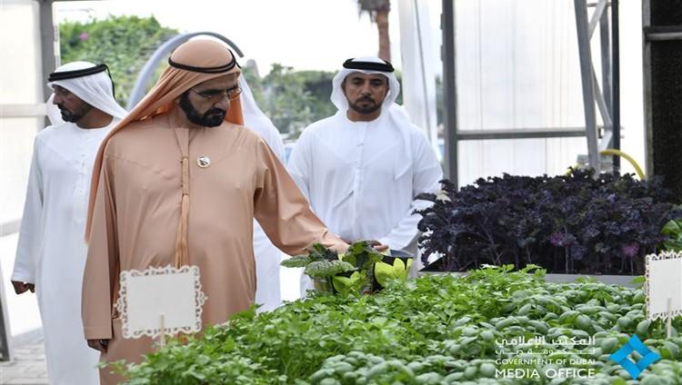 """محمد بن راشد يزور """"المدينة المُستدامة"""" في دبي ويطلع على سير العمل فيها"""