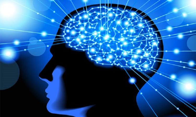 تحنيط دماغ ملياردير والاحتفاظ بذاكرته!