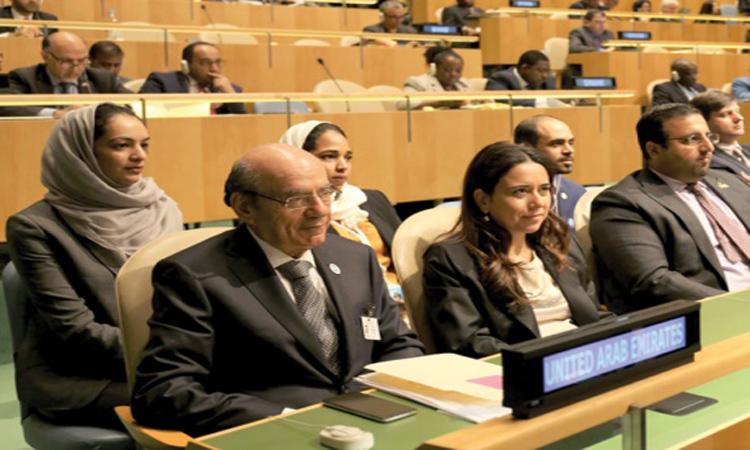 الإمارات تشدد على التزامها بالحلول السياسية في اليمن وسوريا وليبيا