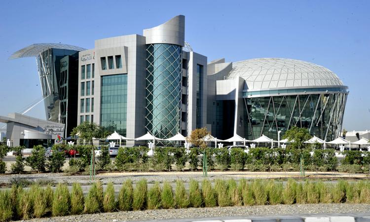 اعتماد خطط تنفيذ قرارات مجلس الوزراء بشأن تسهيلات الدخول والإقامة للأجانب