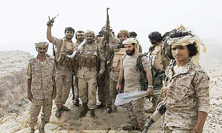 المقاومة اليمنية تستعد لاقتحام مزارع «السويق والفازة» في الحديدة