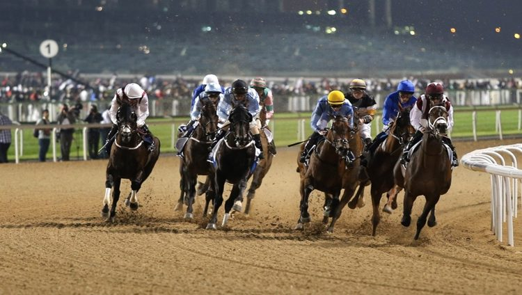 «دبي بيوتي» الأبرز في تحضيري 1000 غينيس الإماراتي