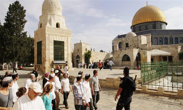 الاحتلال الإسرائيلي يعتقل 13 فلسطينياً ومستوطنون يقتحمون الأقصى