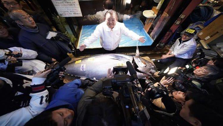 بيع سمكة تونة مقابل 1.8 مليون دولار بأول مزاد في 2020 باليابان