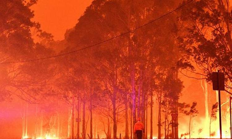 عواصف رعدية بأستراليا تحيي الآمال في إطفاء حرائق الغابات