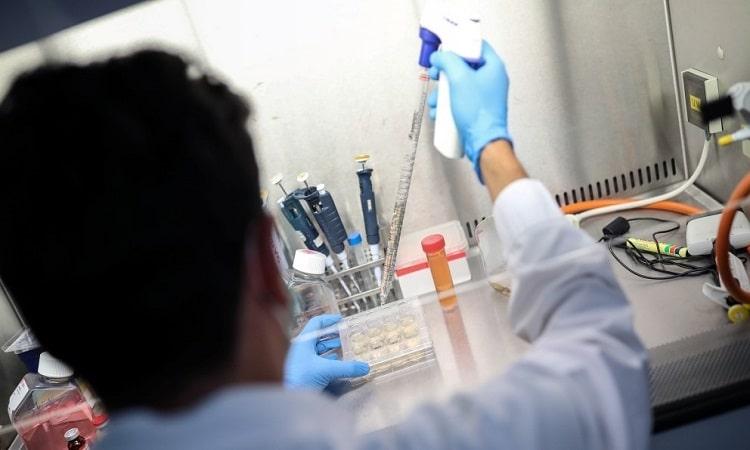 """""""الصحة العالمية"""" ترسل فريقاً إلى الصين للتحقيق في منشأ فيروس كورونا"""