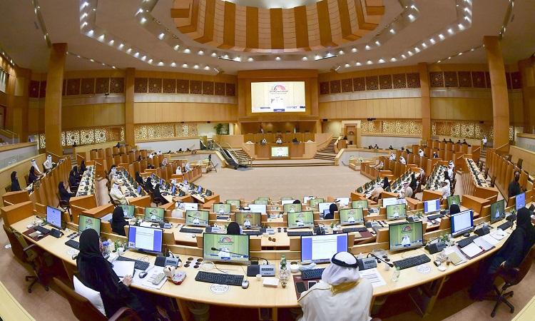 إنجازات تشريعية و رقابية و دبلوماسية برلمانية للمجلس الوطني الإتحادي في 2020