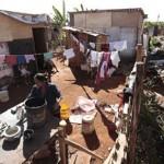 البرازيل: بعيدا عن كأس العالم ..اعين فقراء ماناوس تراقب الثعابين والقمامة