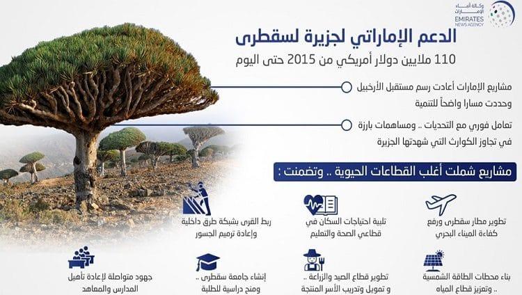 الدعم الإماراتي لجزيرة سقطرى.. 110 ملايين دولار من 2015 حتى اليوم